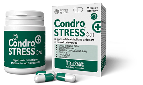 packaging condrostress gatto