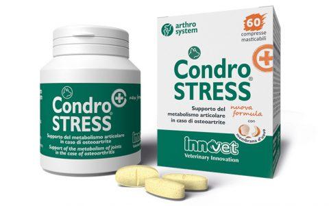 packaging condrostress innovet